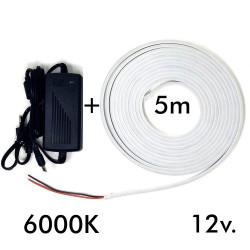 Pack Tira Neón 6000K LED...